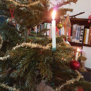juletræ eksport
